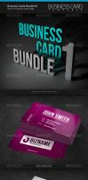 Business Cards Bundle 1 by artnook