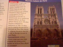 I Found Notre Dame In My Book by FroShaDar
