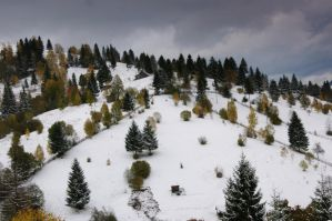 Bucovina lll by ancam131