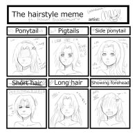 Hairstyle Meme by Chany66x