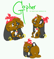 Not Exactly a Gopher by Plushie-chan