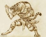 Tiger Beast-man Sketch by Saber-Scorpion
