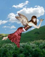 Time For Me To Fly by Rhiannon104
