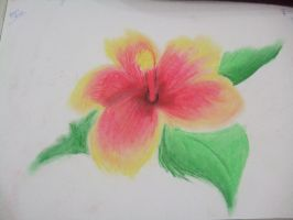 hibiscus pasteled by Niv-Ryo