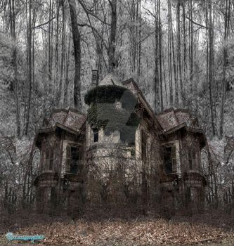 The Haunted House by Branawen