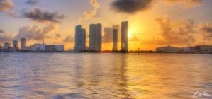 Miami View by wolmers