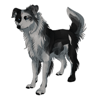 Scout-Non-Puppy by MapleSpyder