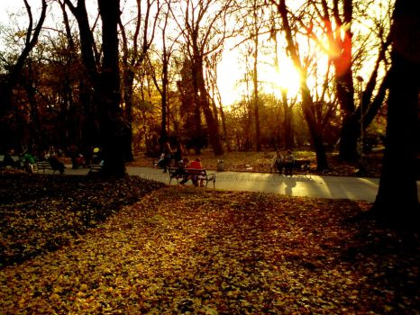 Fall Love park by gaby97