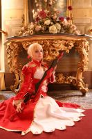 Saber Extra III by HyruleLover