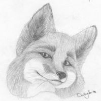 Foxie Grin by Onai-WolfWind