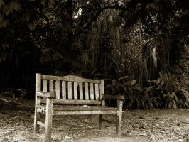 empty bench by dts-spawn