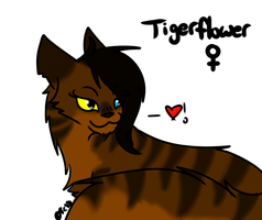 Tigerflower Headshot by Tess-Is-Epic