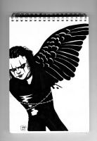The Crow by MHG5