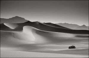 Death Valley, Dunes by aponom