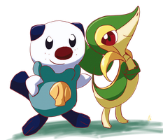 Oshawott and Snivy by KrisCG