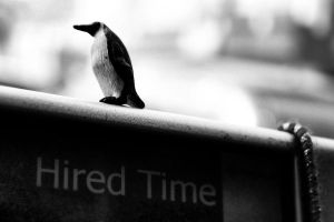 Hired Time by KLS77