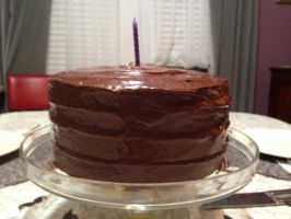 Yellow Cake Chocolate Icing by LexC7