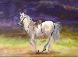 White Horse by aakritiarts