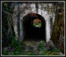 Tunnel in green by VesnaRa14