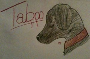 Taboo by Shiverice