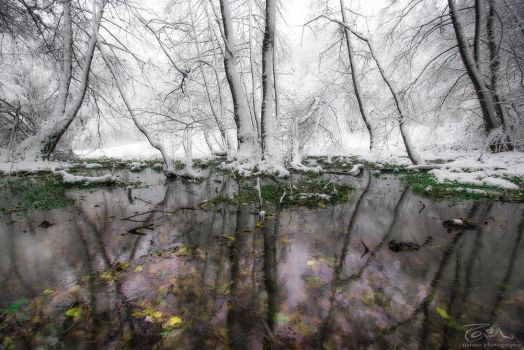 As in a mirror, Autumn or Winter @ acasa by Pod-Photography
