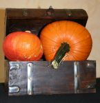 Pumpkins in the Chest 02 by CD-STOCK