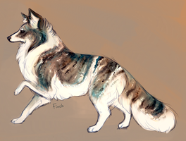 for canidae by Dr187