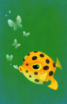 Yellow boxfish by pikaole