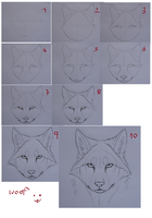 Wolf-Head Tutorial (front) by Drachenseele