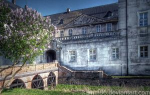 old building by kamm96