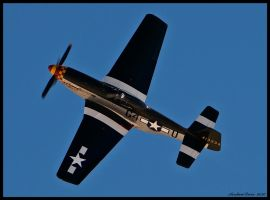 Wee Willy by AirshowDave