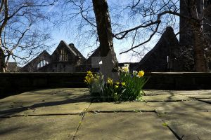 Daffodils and a church ruin at Heptonstall by GaryTaffinder