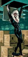 Black Cat litho by AdamHughes