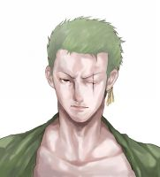 Zoro One piece by akainoharu