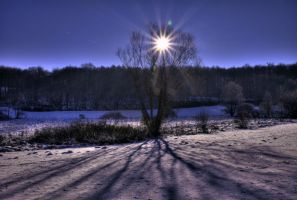 Wintersun by JoInnovate