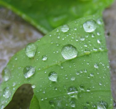 My-Stock - Droplets3 by my-stock