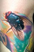 Mosca by maximolutztattoo