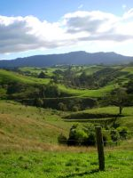 New Zealand Countryside by 116802