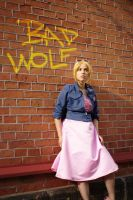 Rose Tyler The Idiot's Lantern Outfit Cosplay by LindaJV