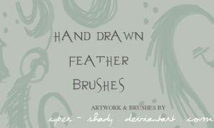 PS Brushes: Hand drawn feather by Cyber-Shady