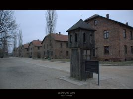Auschwitz 0252 by JuliaKretsch