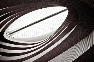 wooden curves no.8 by herbstkind