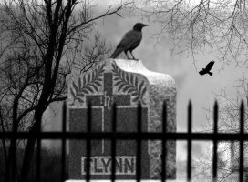 Grave by Vickie666