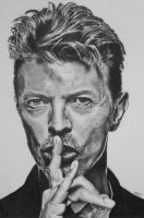 Bowie by mickoc