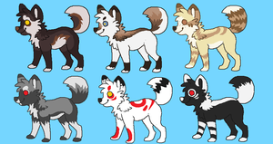 woof woof adopts by Chargay