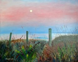Moonrise Sunset by scott-plaster