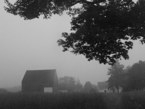 fog by rockthecasbah