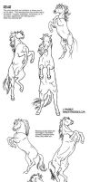 Horse Rearing and Spooking Tutorial by sketcherjak