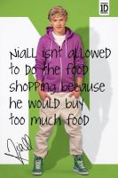 Niall Horan :P by 1Dluverrr2708
