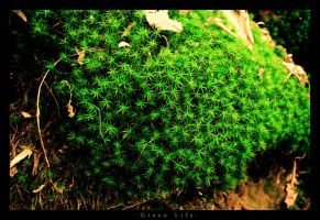 Green Life by m3tzgore